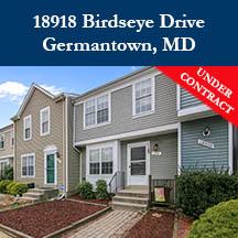 Birdseye Web Banner