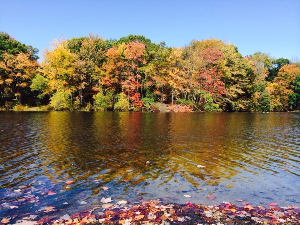 Oak Ridge NJ Shady Lake