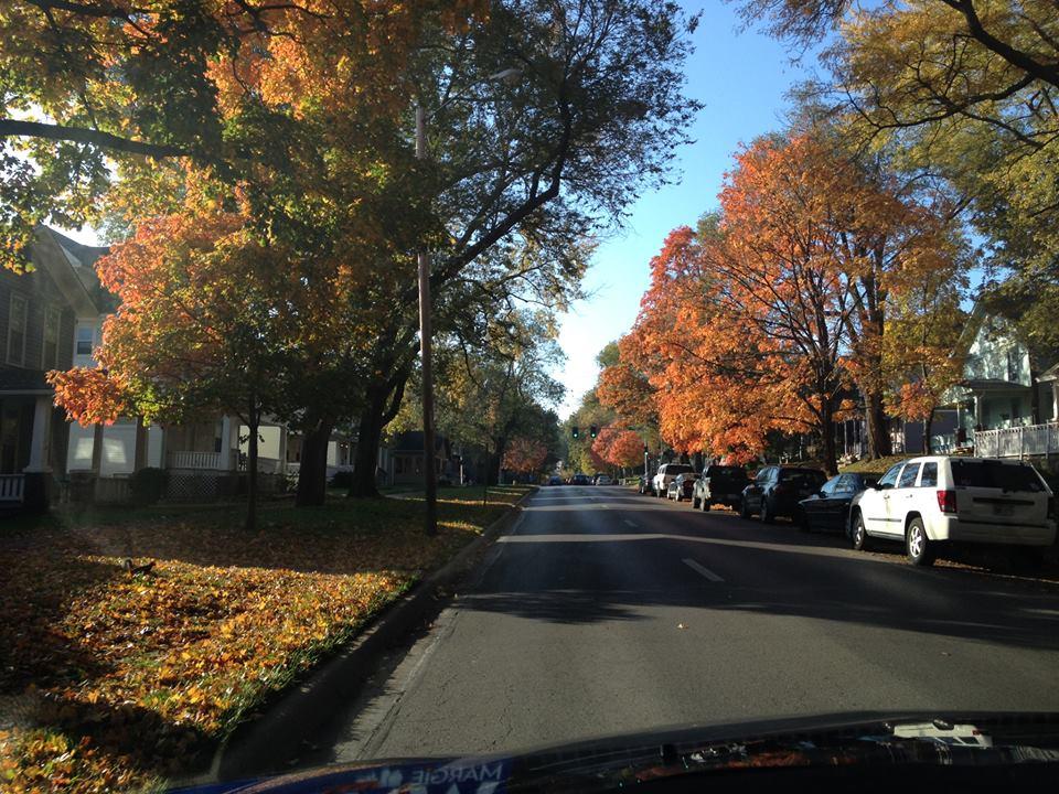 Tennessee St - Autumn